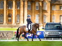 Blenheim, UK, CCI 3*, 2015, images for editorial and advertising usage only, please email for usage rights.