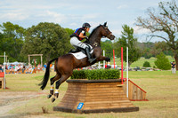 AEC, American Eventing Championships, 2013, Tyler, Texas