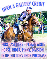 OPEN A Gallery CREDIT-- PLEASE write rider, horse, pinny, division in instructions upon purchase.